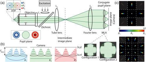 Optical layout of a light field microscope.jpg